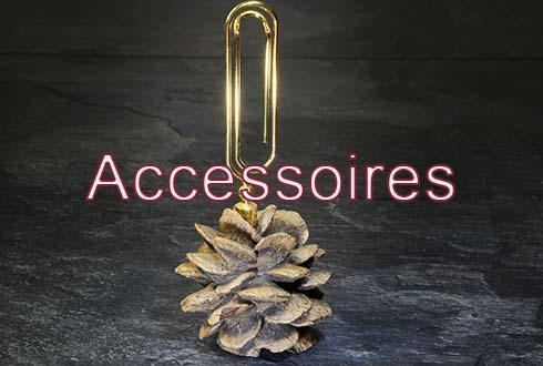 accessoires5829de50f2dc6